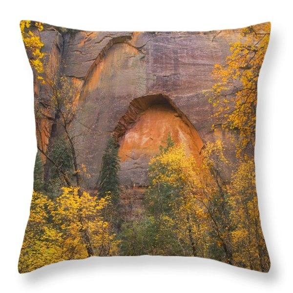 Autumn Arch Throw Pillow by Peter Coskun