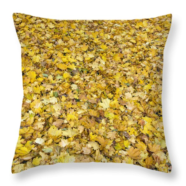 autumn leaves Throw Pillow by Michal Boubin