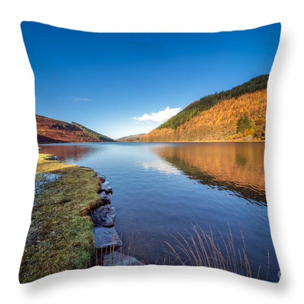 Autumn Reflections Throw Pillow by Adrian Evans