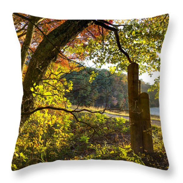 Autumn Trail Throw Pillow by Debra and Dave Vanderlaan