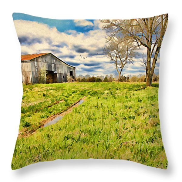 Back Roads of Kentucky Throw Pillow by Darren Fisher