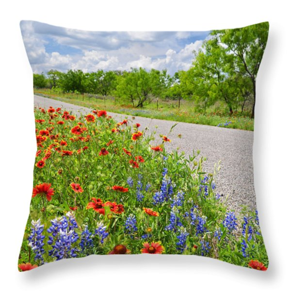 Backroad Beauty Throw Pillow by Lynn Bauer