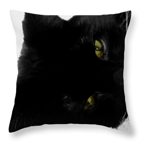 Beethoven Throw Pillow by Cheryl Young