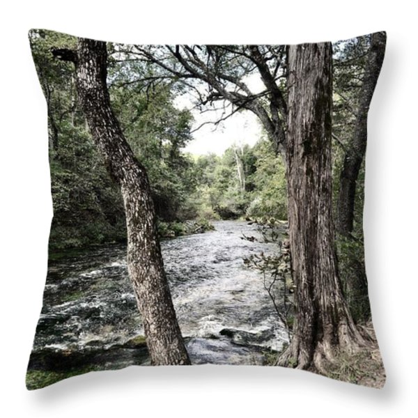 Blue Spring Branch Throw Pillow by Marty Koch