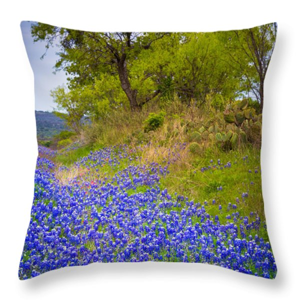 Bluebonnet Meadow Throw Pillow by Inge Johnsson