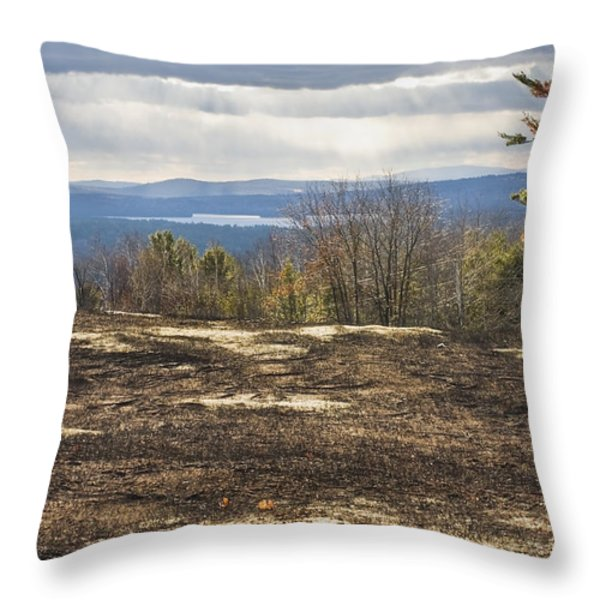 Burnt Blueberry Field In Maine Throw Pillow by Keith Webber Jr