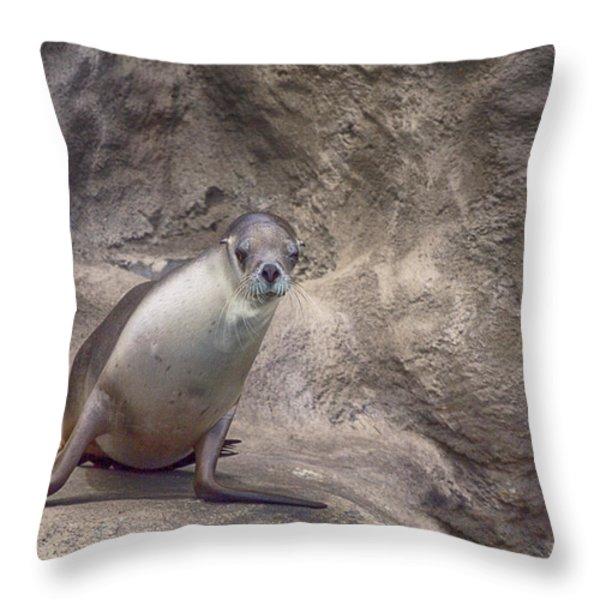 Center of Attraction Throw Pillow by Douglas Barnard