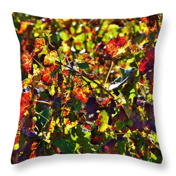 Colors of Autum.... Throw Pillow by Werner Lehmann