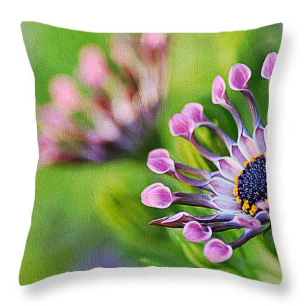 Colors Of Spring Throw Pillow by Darren Fisher