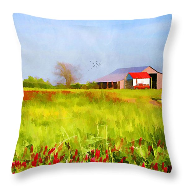 Country Kind Of Spring Throw Pillow by Darren Fisher
