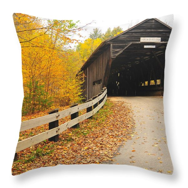 Covered Bridge Throw Pillow by Catherine Reusch  Daley