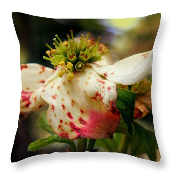 Cranberry Dogwoods Throw Pillow by KAREN WILES