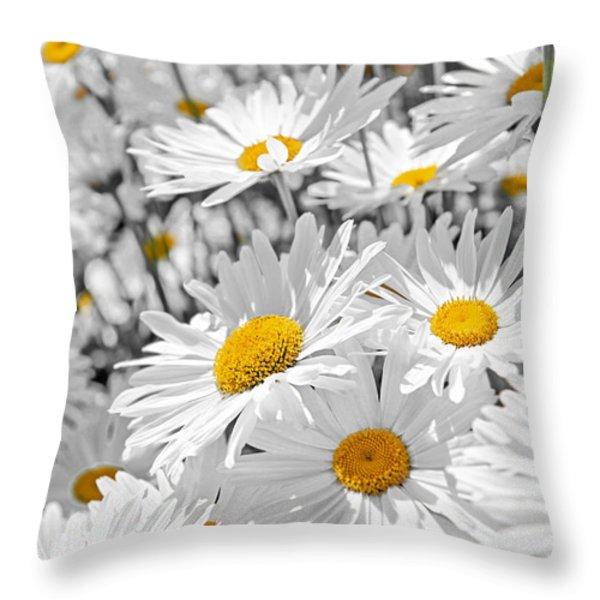 Daisies In Garden Throw Pillow by Elena Elisseeva