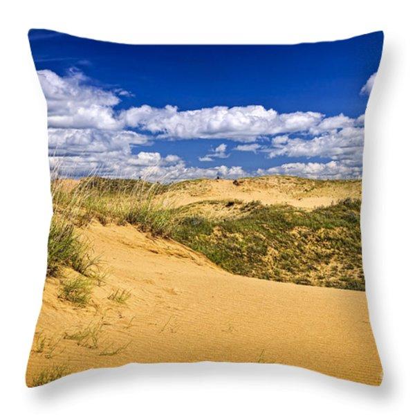 Desert Landscape In Manitoba Throw Pillow by Elena Elisseeva