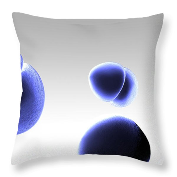 Enterococcus Bacteria Throw Pillow by Spencer Sutton
