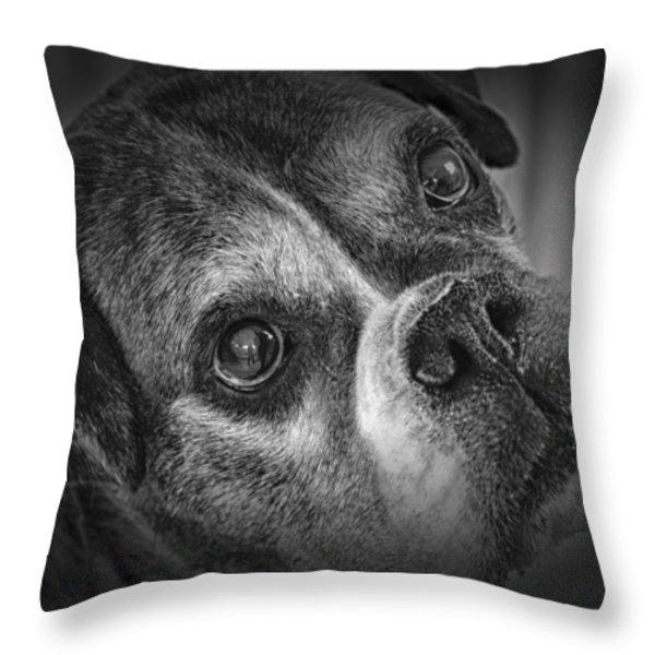 Faithful Companion Throw Pillow by Mountain Dreams