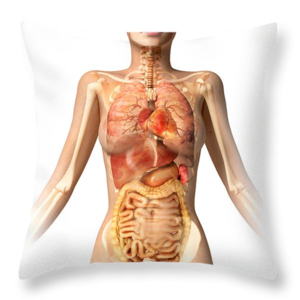 Female Body With Bone Skeleton Throw Pillow by Leonello Calvetti