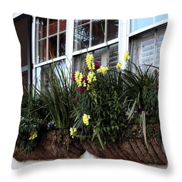 Flowers In The Window Throw Pillow by John Rizzuto