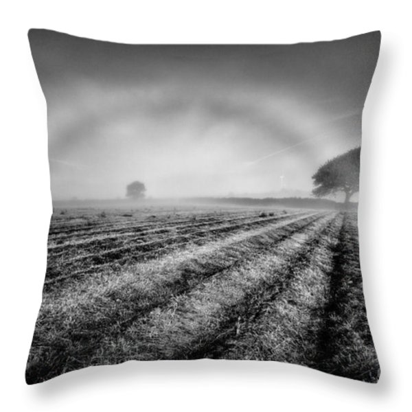 Fog Bow Throw Pillow by John Farnan