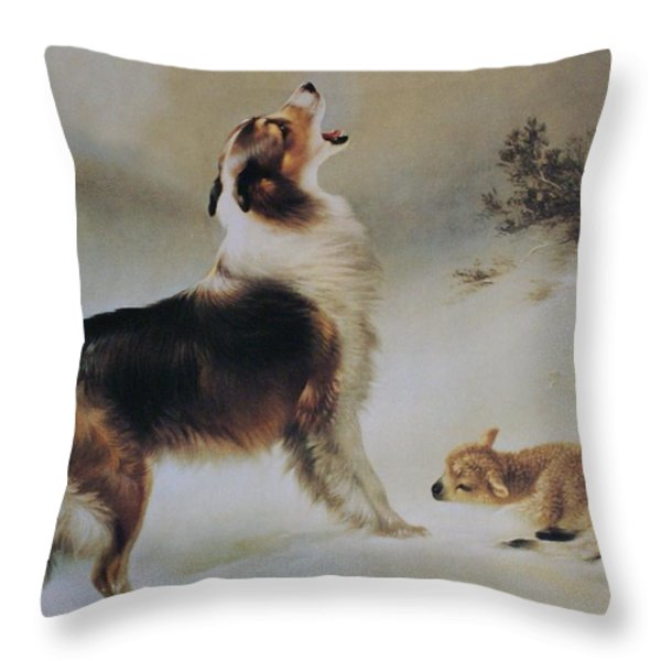 Found Throw Pillow by Albrecht Schenck