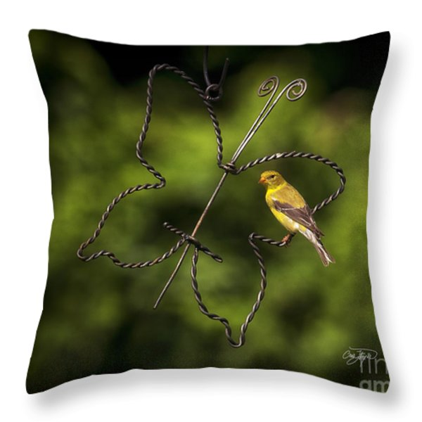 Golden Hour Throw Pillow by Cris Hayes