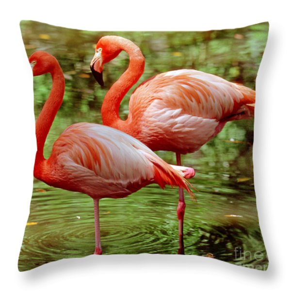 Greater Flamingoes  Throw Pillow by Millard H Sharp