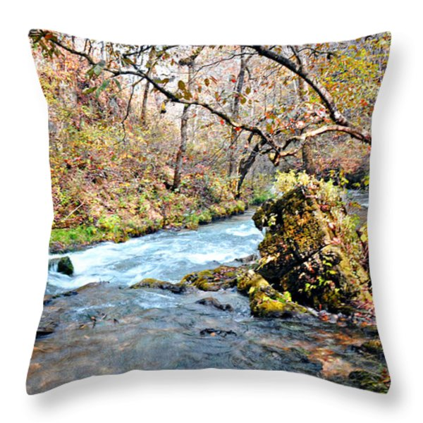 Greer Spring  Throw Pillow by Marty Koch