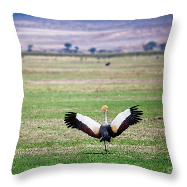 Grey Crowned Crane. The National Bird Of Uganda Throw Pillow by Michal Bednarek