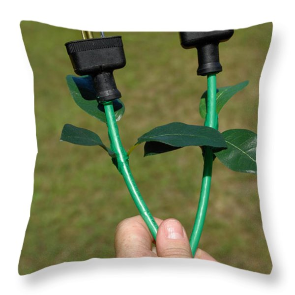 Growing Green Energy Throw Pillow by Amy Cicconi