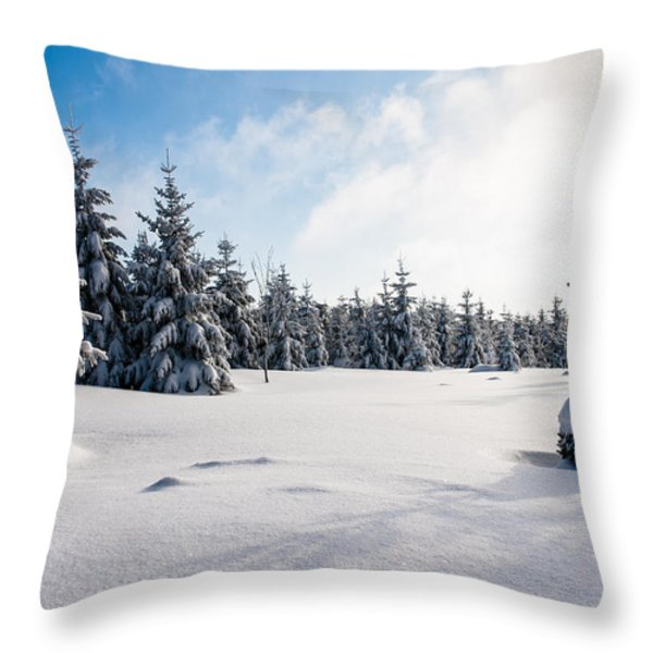 Harz Witches' Trail Throw Pillow by Andreas Levi