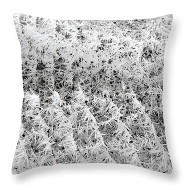 Hoarfrost 14 Throw Pillow by Will Borden