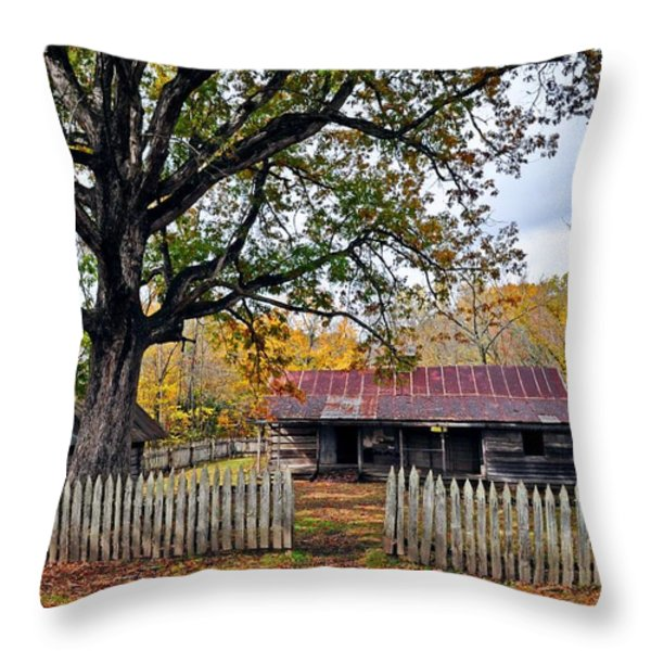 Homestead On The Buffalo Throw Pillow by Marty Koch