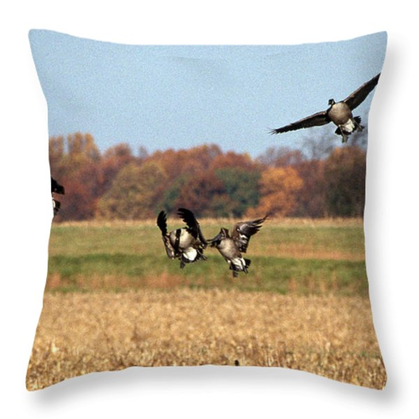 Incoming Throw Pillow by Skip Willits