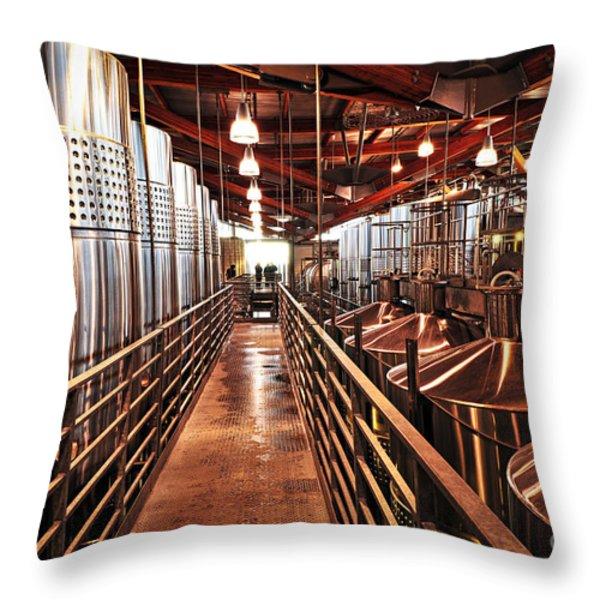 Inside Winery Throw Pillow by Elena Elisseeva