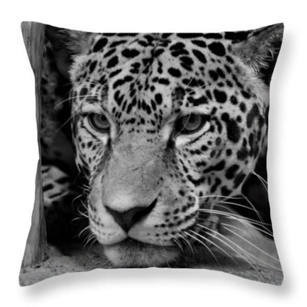 Jaguar in Black and White II Throw Pillow by Sandy Keeton