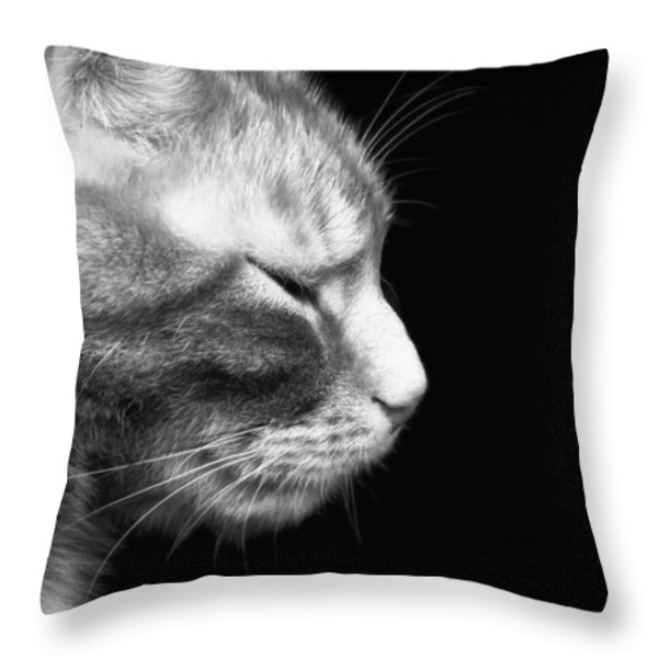 Just A Catnap Throw Pillow by Mountain Dreams