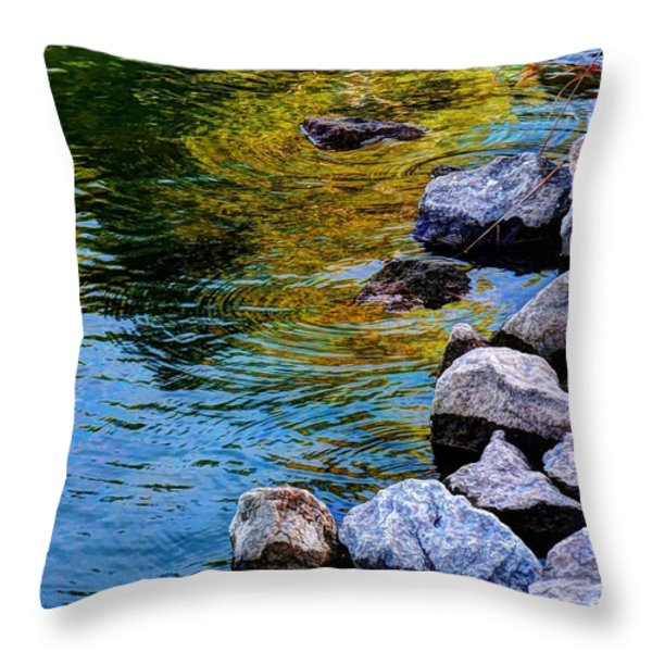 Reflections Throw Pillow by Dani Stites