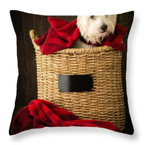 Laundry Day Throw Pillow by Edward Fielding