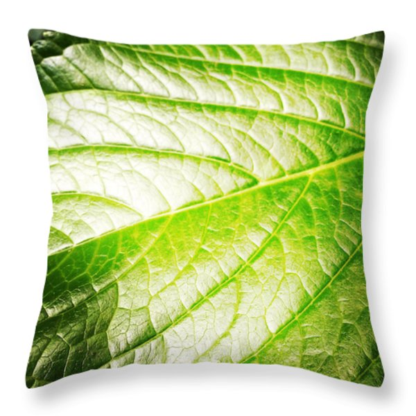 Leaf Throw Pillow by Les Cunliffe
