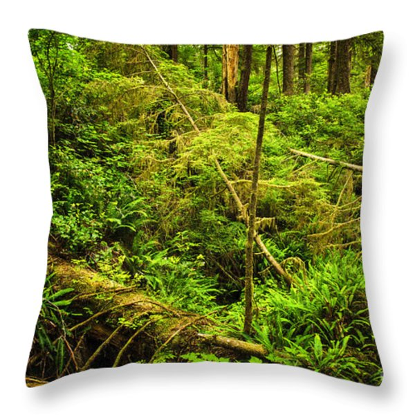 Lush temperate rainforest Throw Pillow by Elena Elisseeva