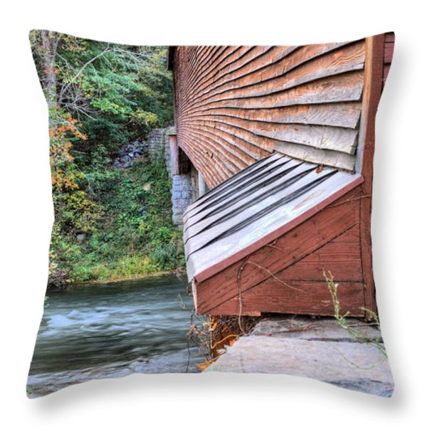 Meems Bottom Throw Pillow by JC Findley