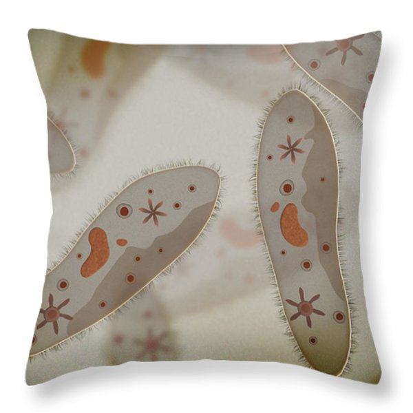 Microscopic View Of Paramecium Throw Pillow by Stocktrek Images