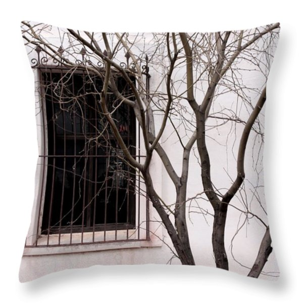 Mission Church Window Throw Pillow by Joe Kozlowski