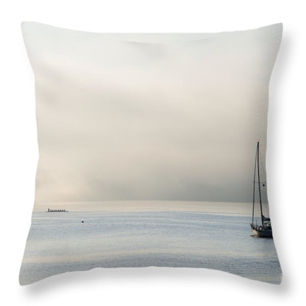 Morning Mist Throw Pillow by Mike  Dawson