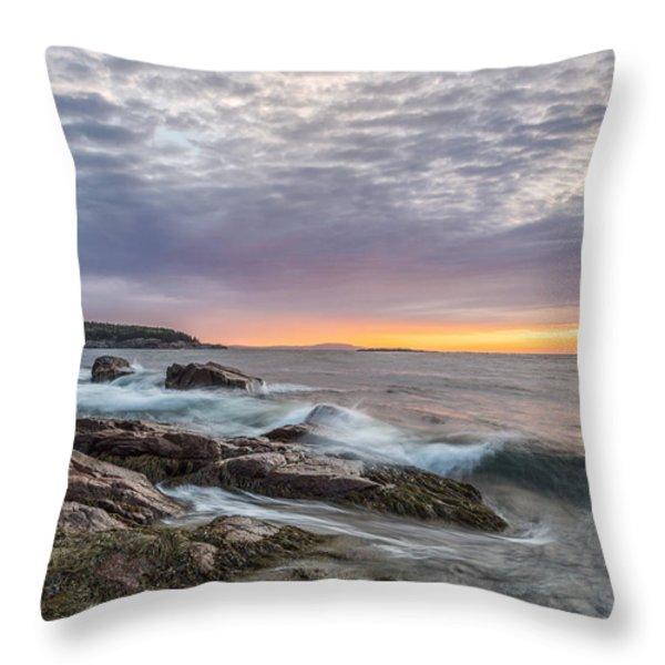 Morning Splash Throw Pillow by Jon Glaser