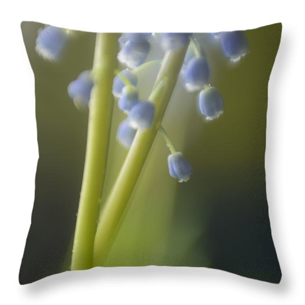 Muscari Throw Pillow by Silke Magino