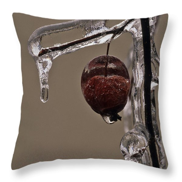 Nature's Candy Apple Throw Pillow by Tony Beck