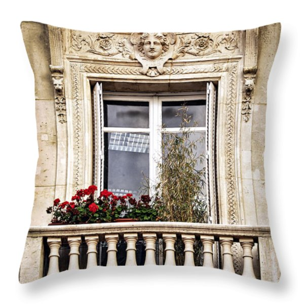 Old window Throw Pillow by Elena Elisseeva