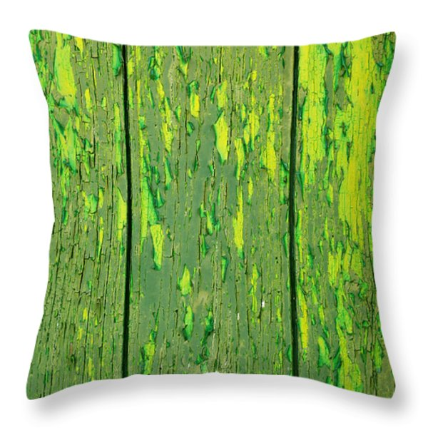 Old Wooden Background Throw Pillow by Carlos Caetano