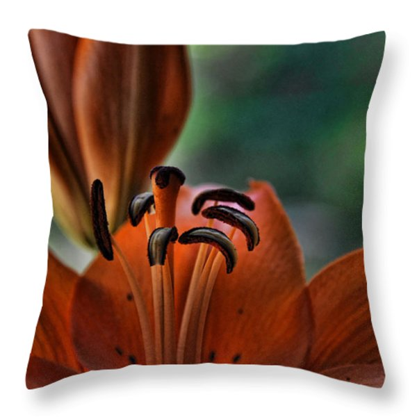 Orange Lilly Throw Pillow by Saija  Lehtonen